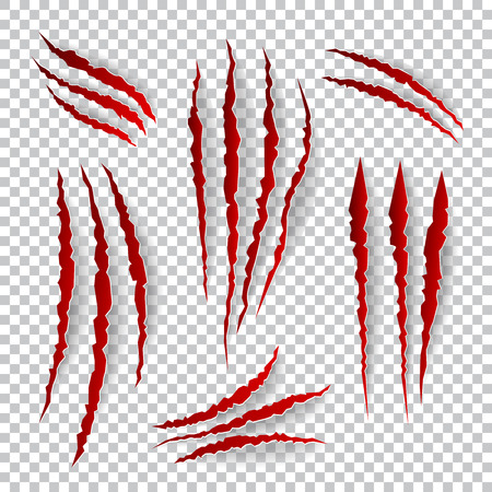 shred: Realistic claw scratches. Vector set on plaid background. Scratch claw animal and illustration shred from claw