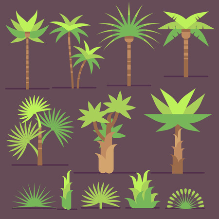 Tropical exotic plants and palm trees vector flat icons. Set of trees with green leaves, illustration of summer tree