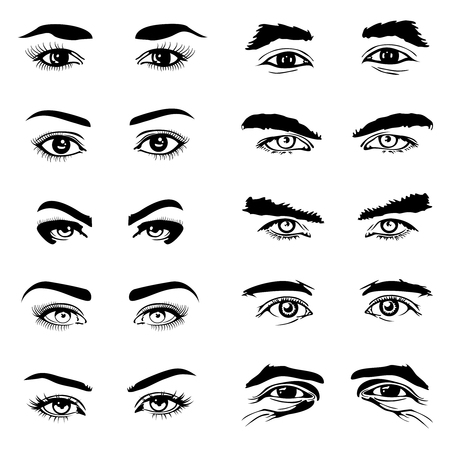 brows: Male and female eyes and eyebrows vector elements. Human eyeball and look illustration