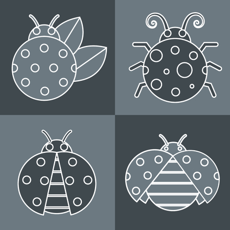 lady cow: Gray ladybug with white stroke on gray background. Vector illustration