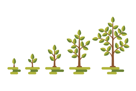 Green tree with leaf growth diagram. Business cycle development, vector illustration Vettoriali