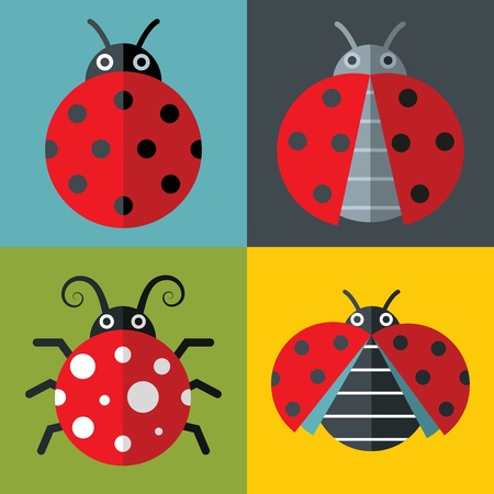 Ladybug icons in flat style on color background with long shadow. Vector illustration