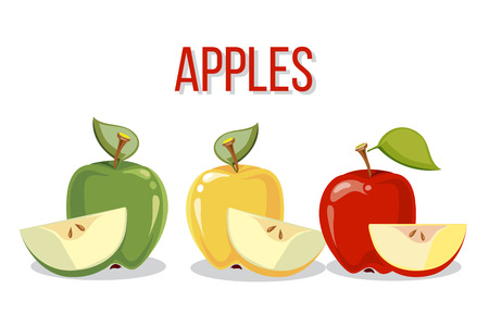 Three apples with slices isolated o white background. Vector illustration