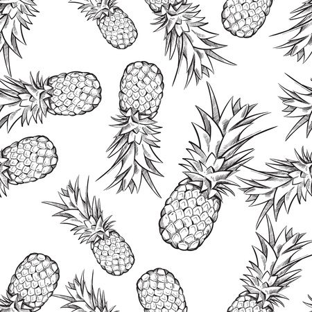 exotic fruit: Pineapple vector seamless pattern. Background with exotic fruit sketch illustration