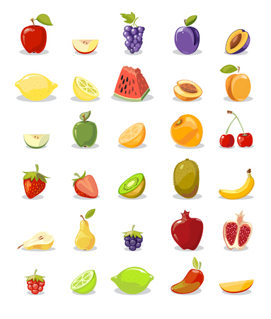 Vector fruits and slices collection. Pear and apple, lemon and orange illustration