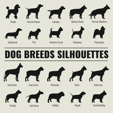 Dog breeds vector silhouettes set. Poodle and german shepherd, dachshund and pug illustration