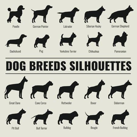 Hondenrassen vector silhouetten. Poedel en Duitse herder, teckel en mopshond illustratie