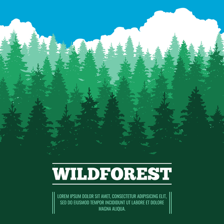 wild nature wood: Wild landscape with fir trees coniferous forest vector illustration. Wood nature with pine and green tree