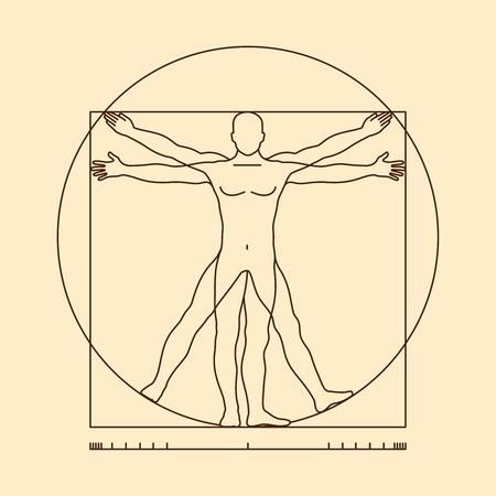 Leonardo da Vinci vitruvian man vector. Illustratie van vitruvian lichaam man, klassiek aandeel Man van Vitruvius Stock Illustratie