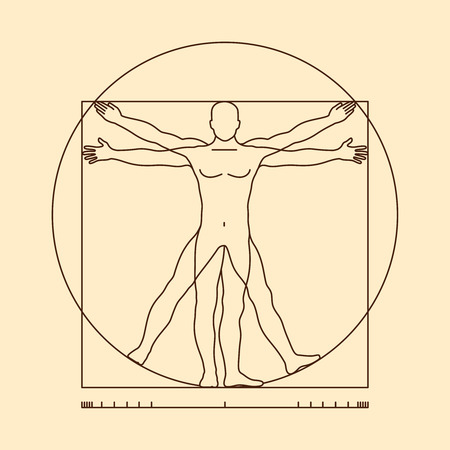 Leonardo da vinci vitruvian man vector. Illustration of vitruvian body man, classic proportion vitruvian man