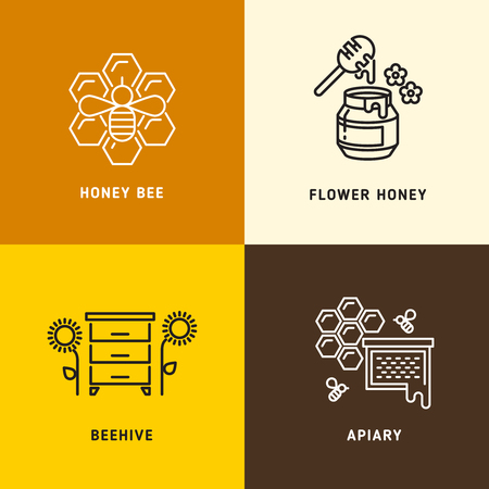 Nature honey, bees honeycomb v