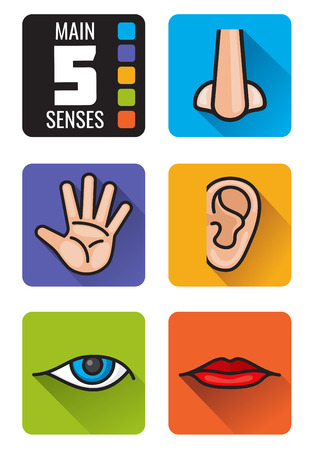 senses: Five senses, nose, hand, mouth, eye, ear vector icons set. Set of human senses smell sight, hearing taste and touch illustration