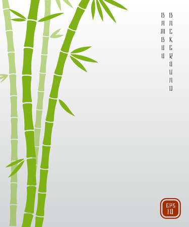 Chinese bamboo or japanese bambu asian vector background. Bamboo plant nature, exotic green stem of bamboo illustration Ilustração