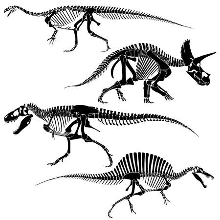 disappeared: Ancient fossil dinosaur skeletons, lizard animals bones vector set. Skeleton disappeared dinosaur, black silhouette skeleton frame illustration