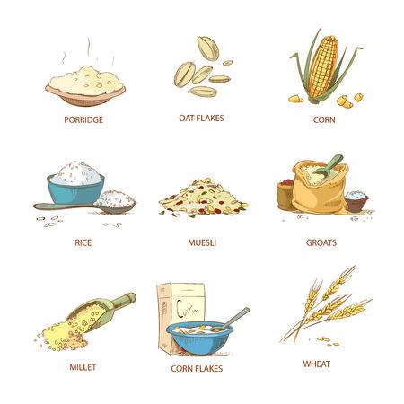 Des épines mûres aux desserts et des céréales, un ensemble de plantes végétales. Moule de céréales naturelles, illustration de céréales nutritives