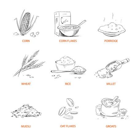 Céréales de griffonnage gruau, porridge, muesli, flocons de maïs, avoine et seigle, blé et orge, millet ou sarrasin, riz, maïs. Ensemble de céréales.