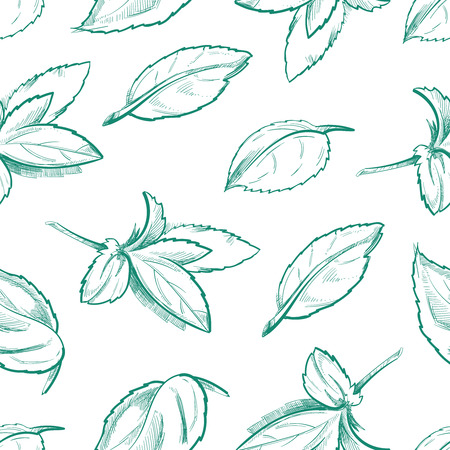 menthol: Eco peppermint tea, fresh mint leaves, menthol seamless background with outline organic mint leaf