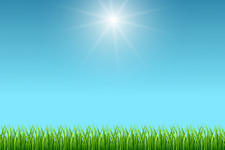 Clean blue sky and green grass vector background. Summer fresh season illustration