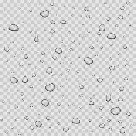 Realistic vector water drops transparent background. Clean drop condensation illustration