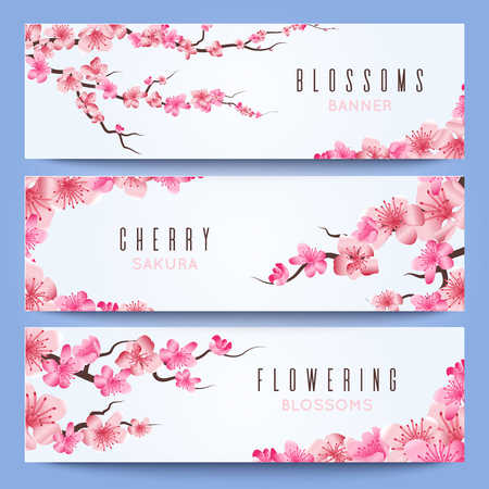Wedding banners template with spring japan sakura cherry blossom vector wedding banners template with spring japan sakura cherry blossom greeting invitation with sakura illustration of japanese cherry in wedding stopboris Image collections