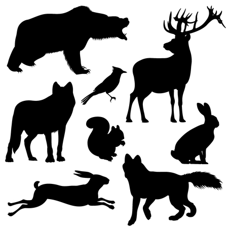 brute: Forest animals vector silhouettes set. Predator animal mammal, illustration of black silhouette animal