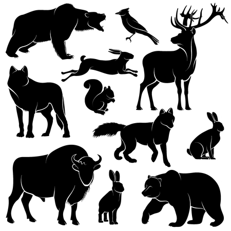 brute: Vector forest animals for wood design. Zoology collection animal wild mammal, illustration of forest animal