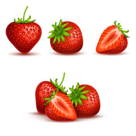 Vector realistic sweet and fresh strawberry isolated on white background. Fresh fruit organic, illustration of red sweet strawberry Çizim