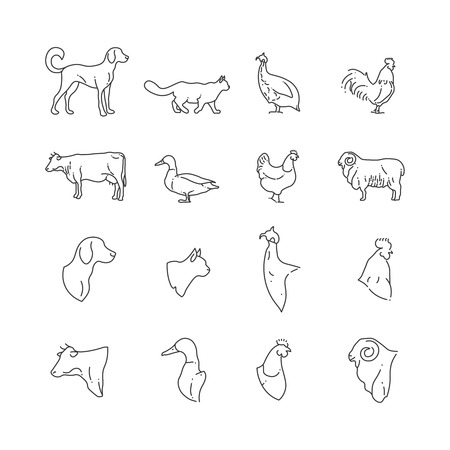 Farm animal and birds thin line icons. Farm pig and bird, rabbit and cow, vector illustration