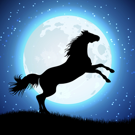 Silhouette of horse on the moon background. Animal in moon light. Vector illustration