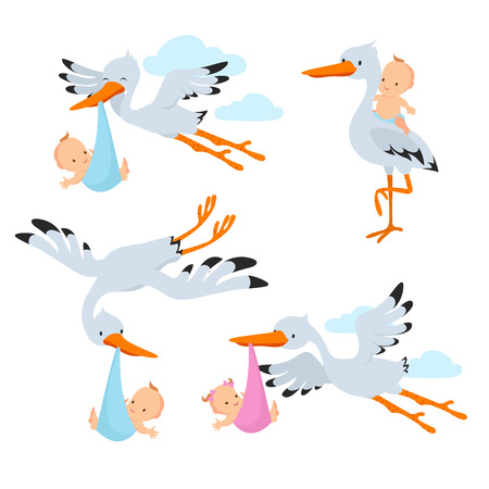 Cartoon flying storks and stork birds carrying baby vector set Vectores