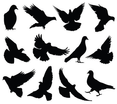 Flying birds silhouettes vector illustration set