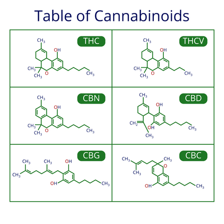 Cannabis skeletal formula. Marijuana molecules vector set