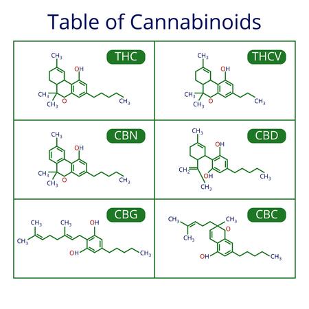 Cannabis skeletal formula. Marijuana molecules vector set