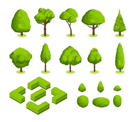 等角図 3D ベクター パークと庭の木と茂み。緑林植物コレクション