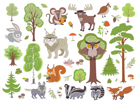 Big set of wild forest animals birds and trees. Cartoon forest isolated on white background Vettoriali