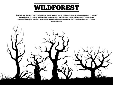 Black wild old forest landscape background illustration.