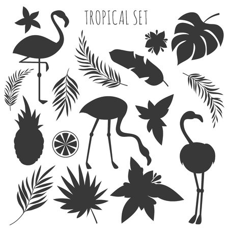 Grey tropical plants and flamingos silhouettes templates
