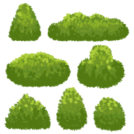 Siepe naturale, cespugli verdi del giardino. Insieme di vettore del cespuglio e dell'arbusto del fumetto isolato su priorità bassa bianca Vettoriali