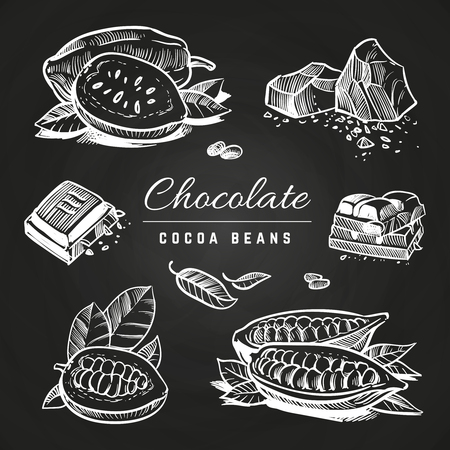 Hand drawing chocolate slices and cocoa beans isolated on blackboard. Vector illustration