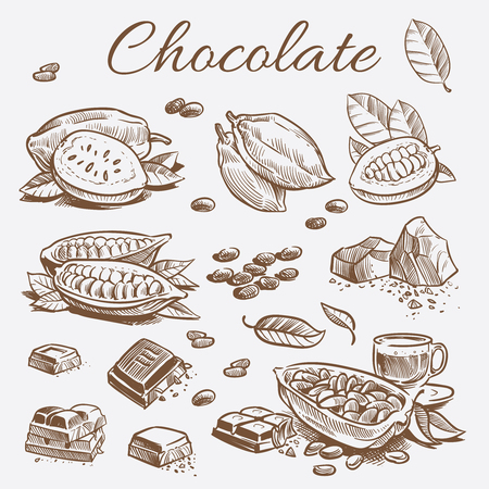 Chocolate elements collection. Hand drawing cocoa beans, chocolate bars and leaves Stock Illustratie