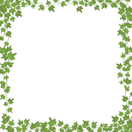 Ivy vines with green leaves. Floral vector rectangular frame isolated on white background