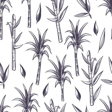 Gambi della canna da zucchero con le foglie, modello senza cuciture di vettore della pianta della canna da zucchero Fondo senza cuciture della canna da zucchero del gambo, illustrazione dell'ingrediente della canna da zucchero