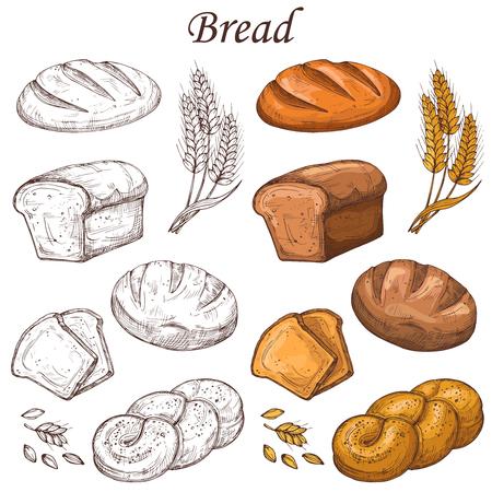Ligne et éléments vectoriels de boulangerie colorés. Miche de pain isolé sur fond blanc Vecteurs