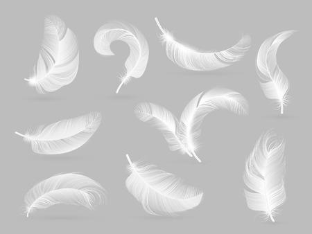 Plumas realistas. Pluma que cae del pájaro blanco aislada en la colección del vector del fondo blanco. Ilustración de pájaro de plumas, penacho blanco suave Ilustración de vector