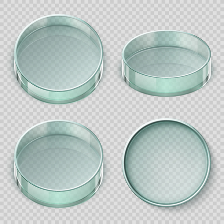 Empty glass petri dish. Biology lab dishes vector illustration isolated on transparent background. Lab glass for test, dish petri, medical glassware