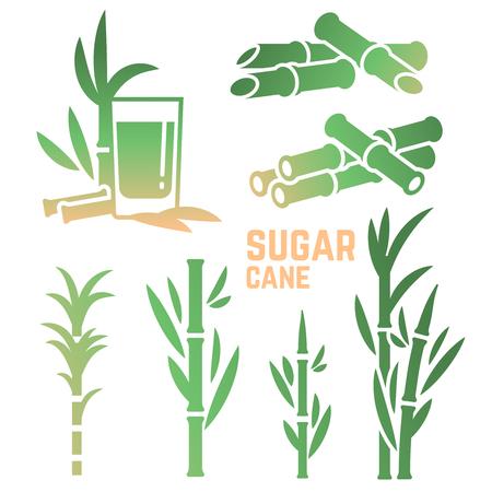 Icônes de silhouettes de canne à sucre de collection isolé sur fond blanc. Illustration vectorielle Vecteurs