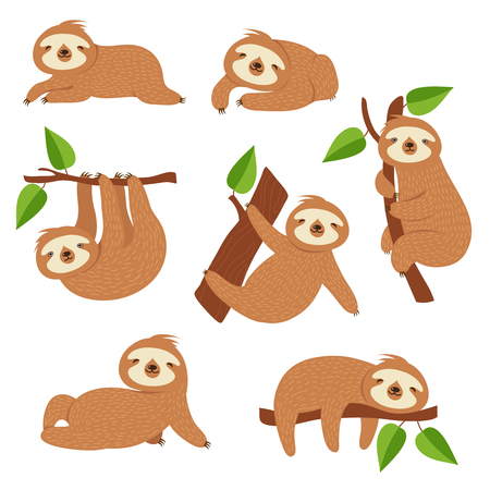 Cute sloths. Cartoon sloth hanging on tree branch. Baby jungle animal vector isolated characters. Lazy wild sloth, wildlife animal slow on tree illustration Vettoriali
