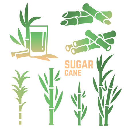 Sugar cane silhouettes icons of collection isolated on white background. Vector illustration Illustration