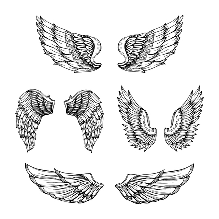 Hand drawn wing. Sketch angel wings with feathers. Vector tattoo design isolated. Angel wing tattoo, bird feather sketch drawn illustration Ilustração