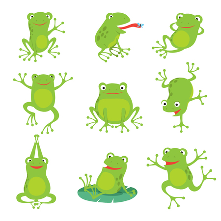 Cute cartoon frogs. Green croaking toad on lotus leaves in pond. Vector animal characters set of amphibian toad drawing, green frog collection illustration Stock Illustratie
